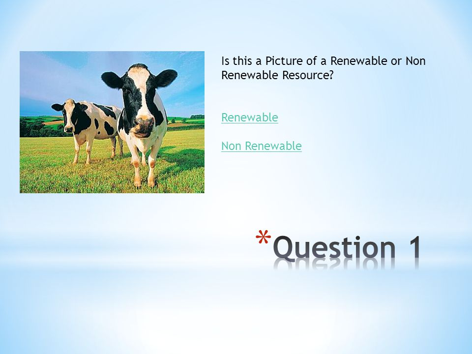 Is this a Picture of a Renewable or Non Renewable Resource? Renewable Non Renewable