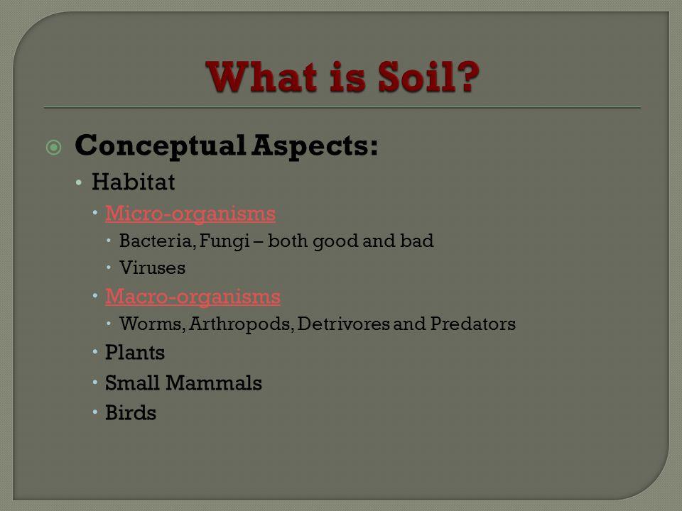 Conceptual Aspects: Habitat Micro-organisms Bacteria, Fungi – both good and bad Viruses Macro-organisms Worms, Arthropods, Detrivores and Predators Pl