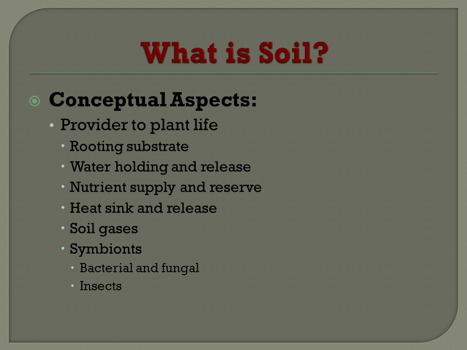 Conceptual Aspects: Provider to plant life Rooting substrate Water holding and release Nutrient supply and reserve Heat sink and release Soil gases Sy