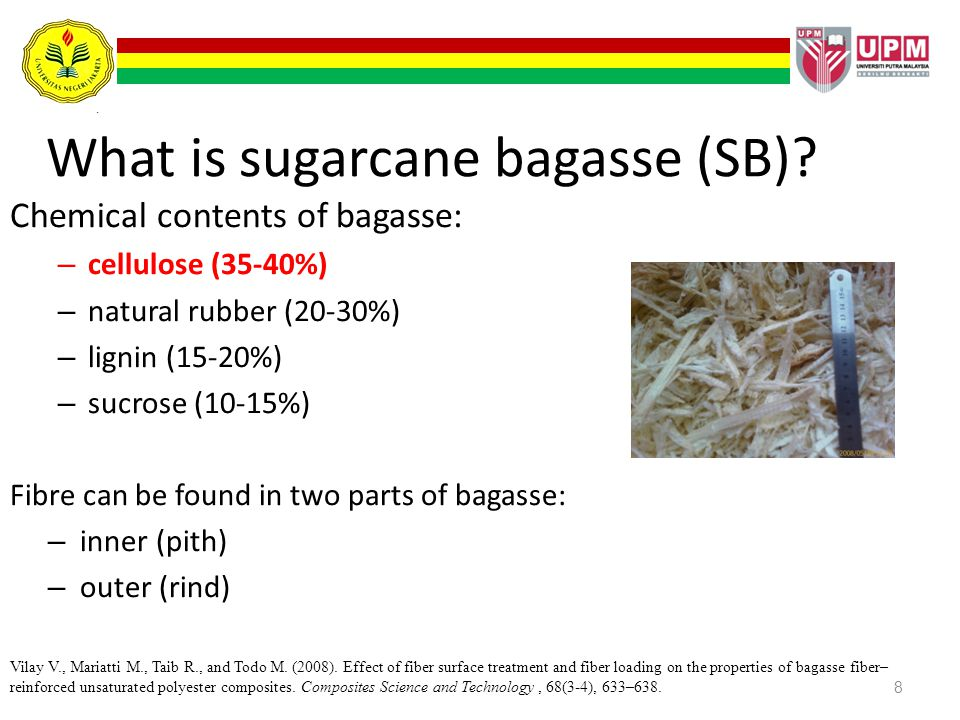 8 What is sugarcane bagasse (SB)? Chemical contents of bagasse: – cellulose (35-40%) – natural rubber (20-30%) – lignin (15-20%) – sucrose (10-15%) Fi