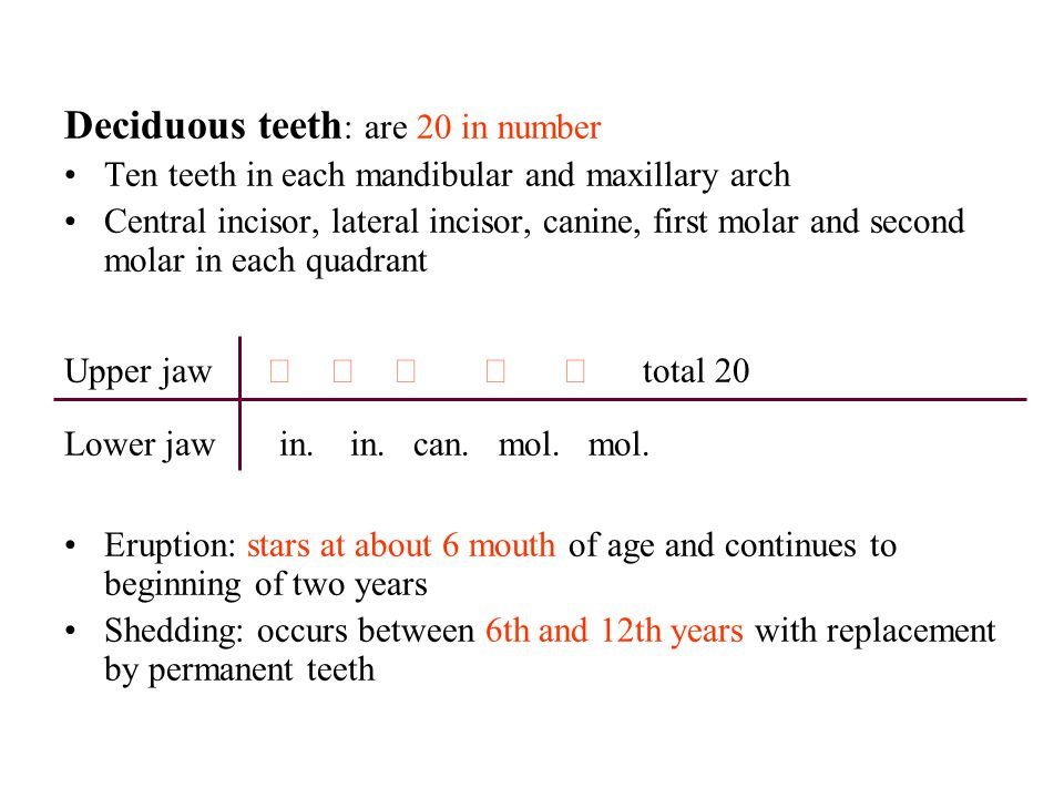 Deciduous teeth : are 20 in number Ten teeth in each mandibular and maxillary arch Central incisor, lateral incisor, canine, first molar and second mo