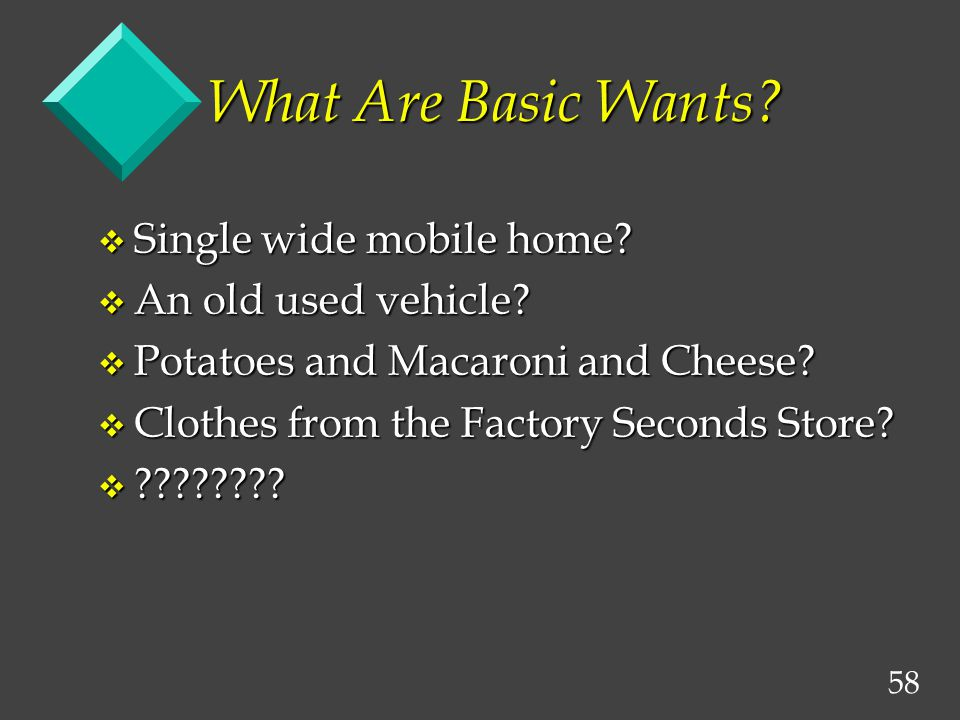 58 What Are Basic Wants. v Single wide mobile home.