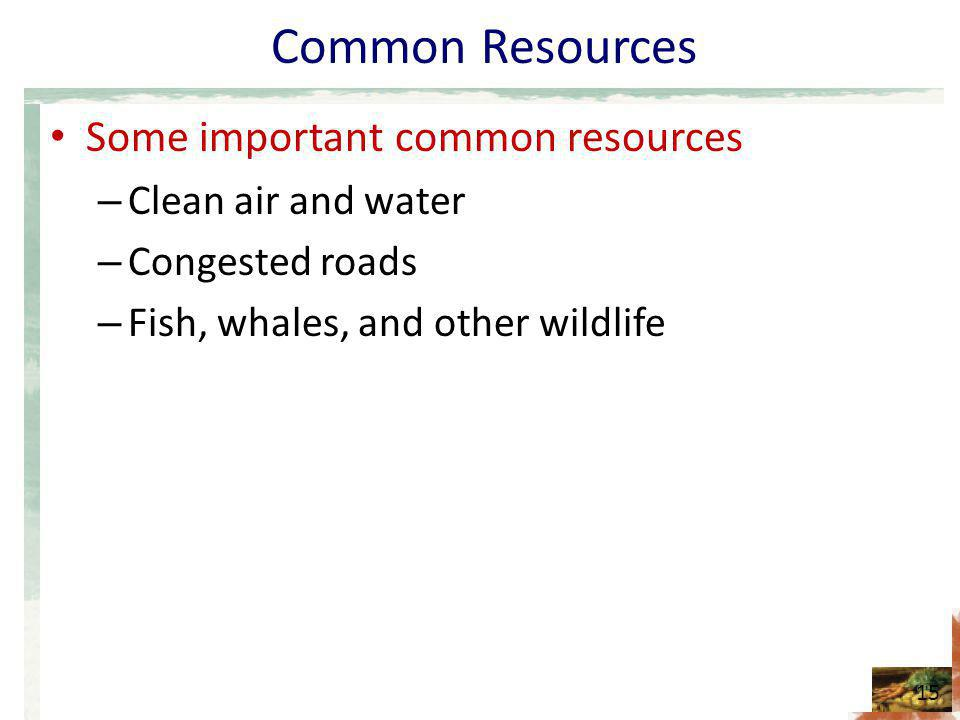 Common Resources Some important common resources – Clean air and water – Congested roads – Fish, whales, and other wildlife 15