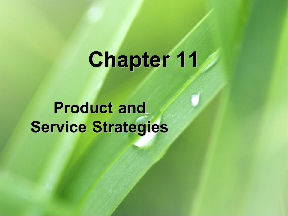 11-22 Business services Business services: intangible product purchased to facilitate a firms production and operating processes such as financial services, leasing of vehicles, legal advice and consulting Wireless Communications for a Mobile Workforce