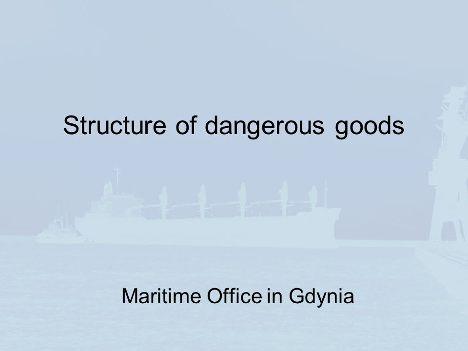 Structure of dangerous goods Maritime Office in Gdynia