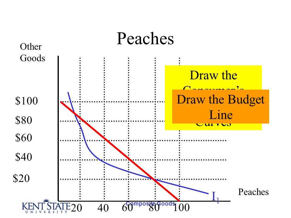 Composite Goods Peaches Other Goods Peaches I1I1 Draw the Consumers Indifference Curves Draw the Budget Line $100 $80 $60 $40 $20 2040 6080100