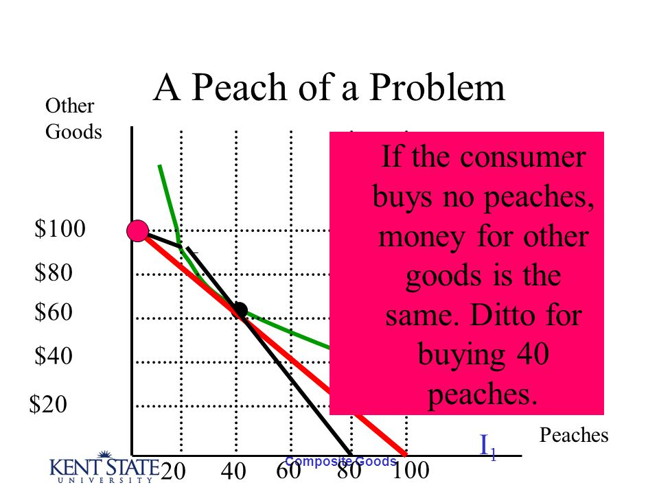 Composite Goods A Peach of a Problem Other Goods Peaches I1I1 $100 $80 $60 $40 $20 2040 6080100 The new and old budget lines If the consumer buys no peaches, money for other goods is the same.