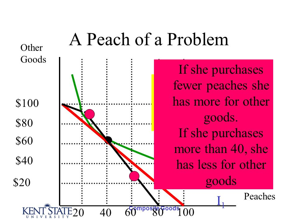 Composite Goods A Peach of a Problem Other Goods Peaches I1I1 $100 $80 $60 $40 $20 2040 6080100 The new and old budget lines If she purchases fewer peaches she has more for other goods.