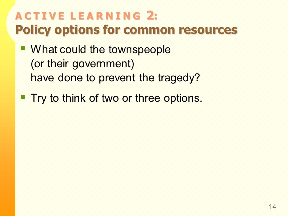 A C T I V E L E A R N I N G 2 : Policy options for common resources What could the townspeople (or their government) have done to prevent the tragedy.