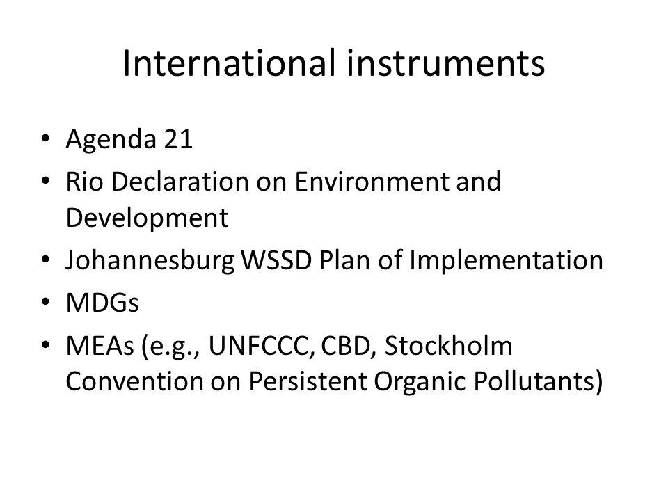 International instruments Agenda 21 Rio Declaration on Environment and Development Johannesburg WSSD Plan of Implementation MDGs MEAs (e.g., UNFCCC, C
