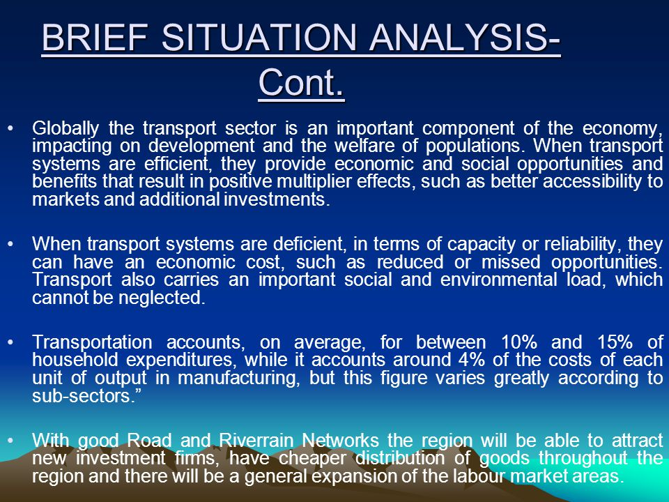 BRIEF SITUATION ANALYSIS- Cont.