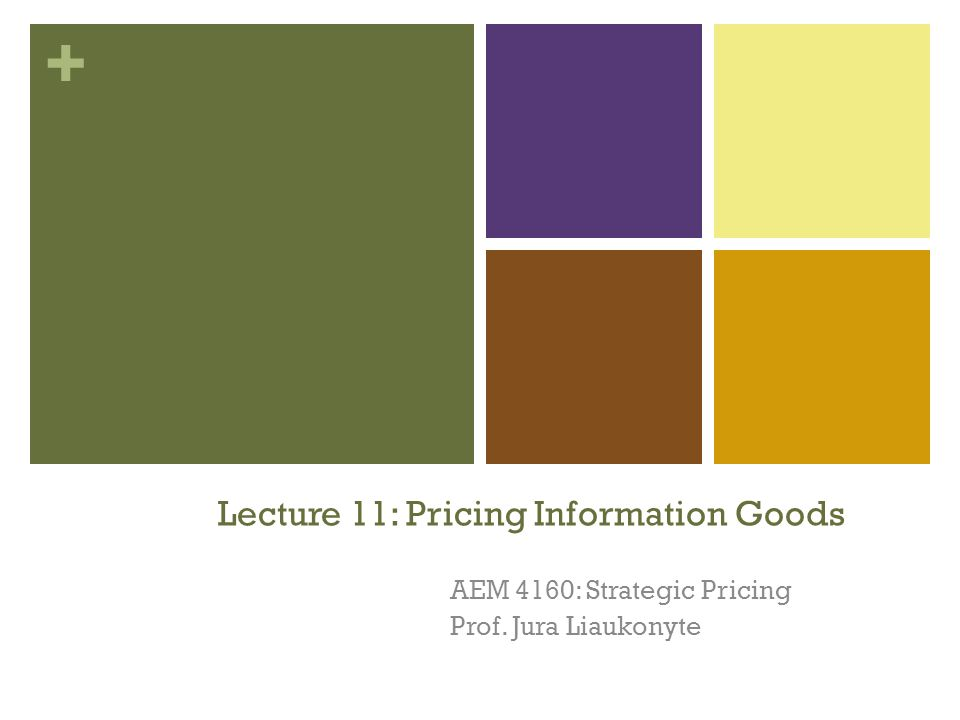 + Lecture 11: Pricing Information Goods AEM 4160: Strategic Pricing Prof. Jura Liaukonyte 1