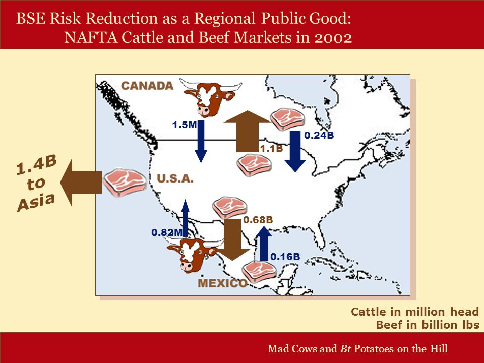 Mad Cows and Bt Potatoes on the Hill BSE Risk Reduction as a Regional Public Good: NAFTA Cattle and Beef Markets in 2002 Cattle in million head Beef in billion lbs 1.5M 0.16B 0.82M 0.24B 1.1B 0.68B