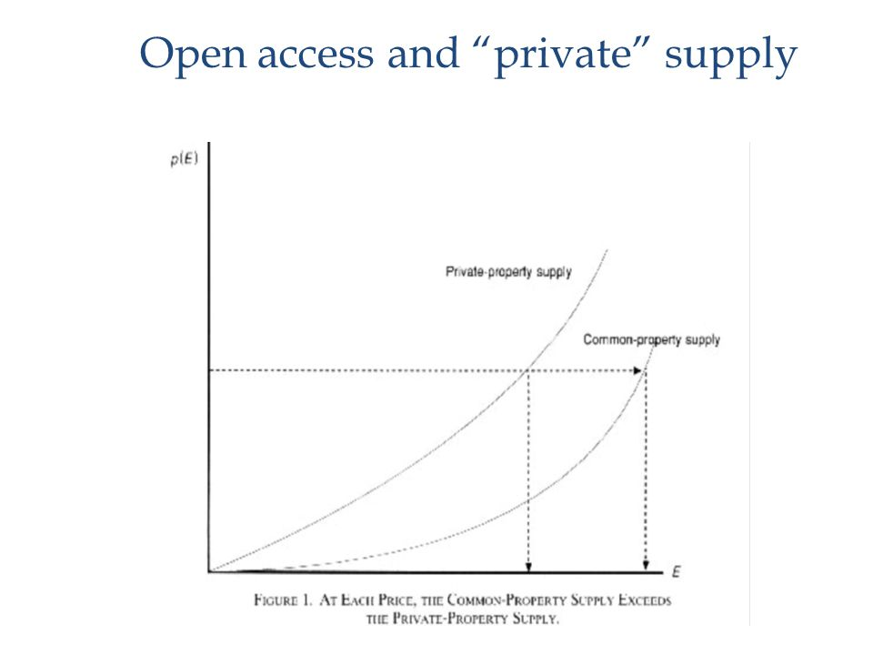 Open access and private supply