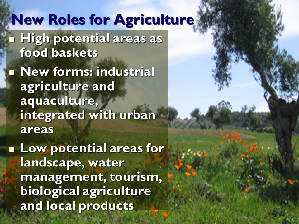 New Roles for Agriculture High potential areas as food baskets High potential areas as food baskets New forms: industrial agriculture and aquaculture, integrated with urban areas New forms: industrial agriculture and aquaculture, integrated with urban areas Low potential areas for landscape, water management, tourism, biological agriculture and local products Low potential areas for landscape, water management, tourism, biological agriculture and local products