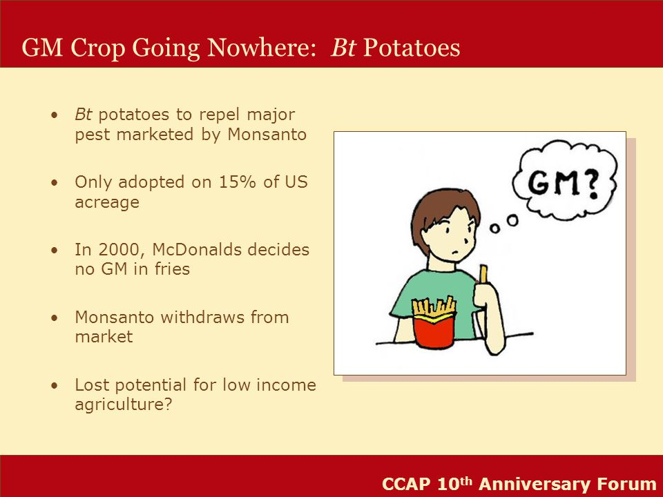 CCAP 10 th Anniversary Forum GM Crop Going Nowhere: Bt Potatoes Bt potatoes to repel major pest marketed by Monsanto Only adopted on 15% of US acreage In 2000, McDonalds decides no GM in fries Monsanto withdraws from market Lost potential for low income agriculture?