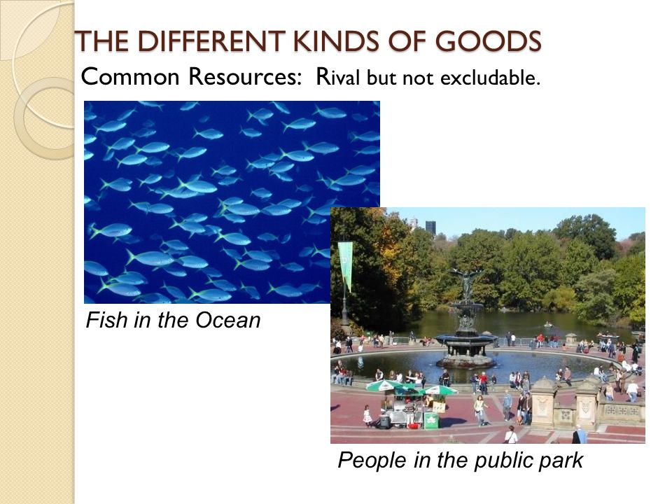 THE DIFFERENT KINDS OF GOODS Common Resources: R Common Resources: R ival but not excludable. Fish in the Ocean People in the public park