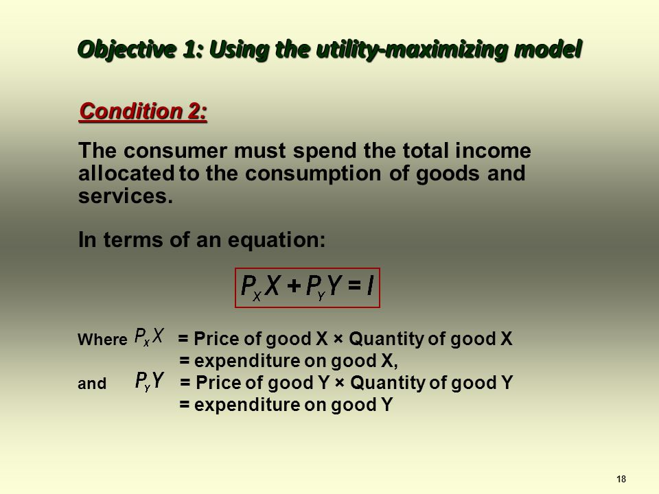 18 Condition 2: The consumer must spend the total income allocated to the consumption of goods and services.