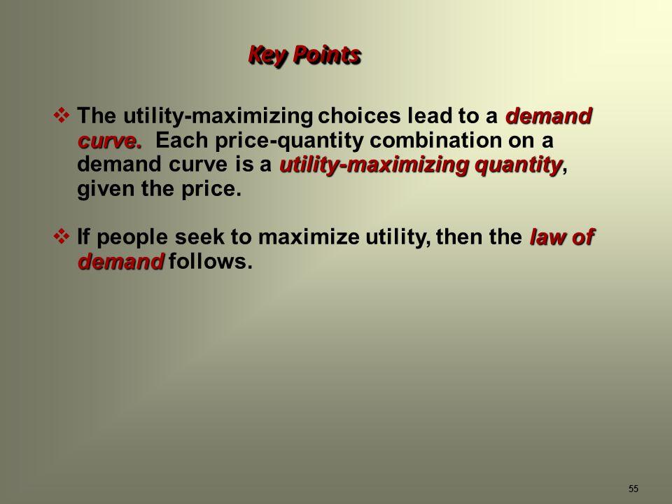 55 Key Points demand curve.