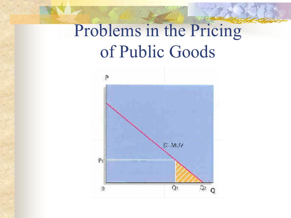 Problems in the Pricing of Public Goods