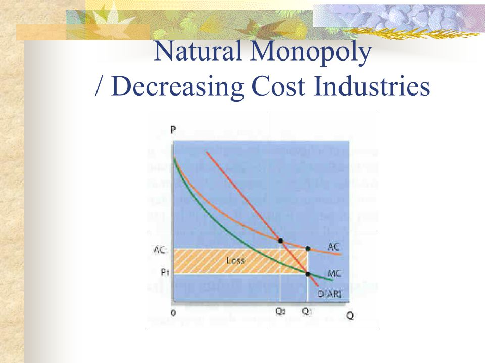Natural Monopoly / Decreasing Cost Industries