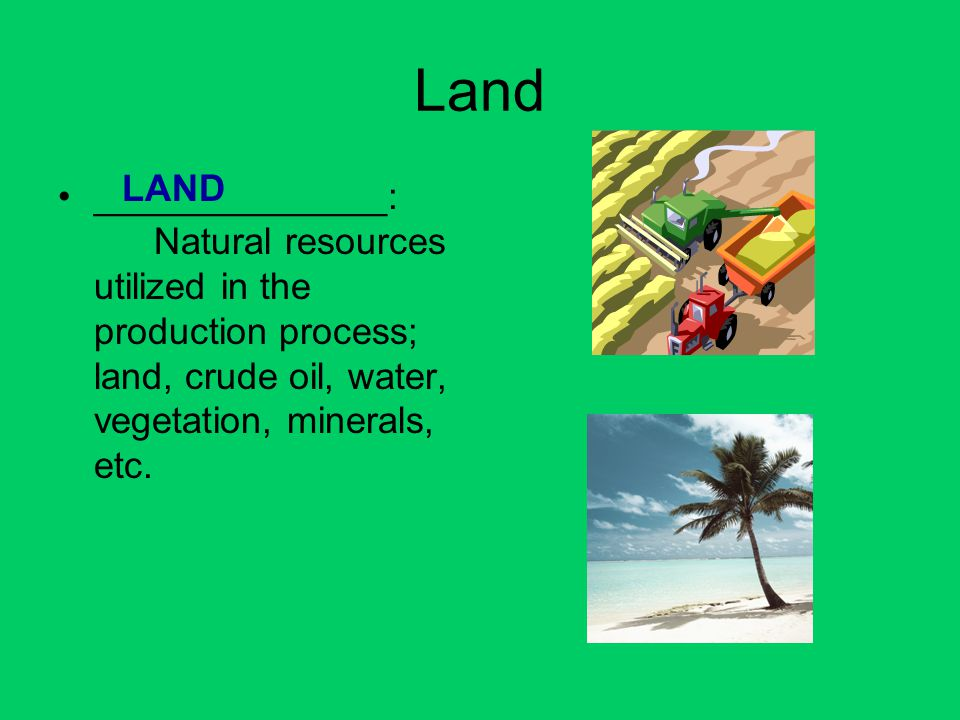 Land ______________: Natural resources utilized in the production process; land, crude oil, water, vegetation, minerals, etc. LAND