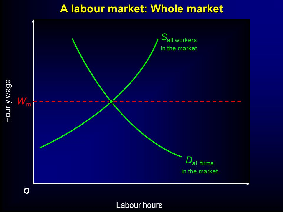 O Labour hours Hourly wage WmWm S all workers in the market D all firms in the market A labour market: Whole market