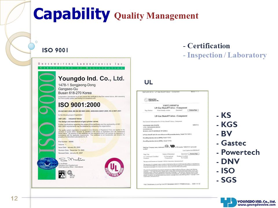 12 Capability Quality Management ISO 9001 UL - Certification - Inspection / Laboratory - KS - KGS - BV - Gastec - Powertech - DNV - ISO - SGS
