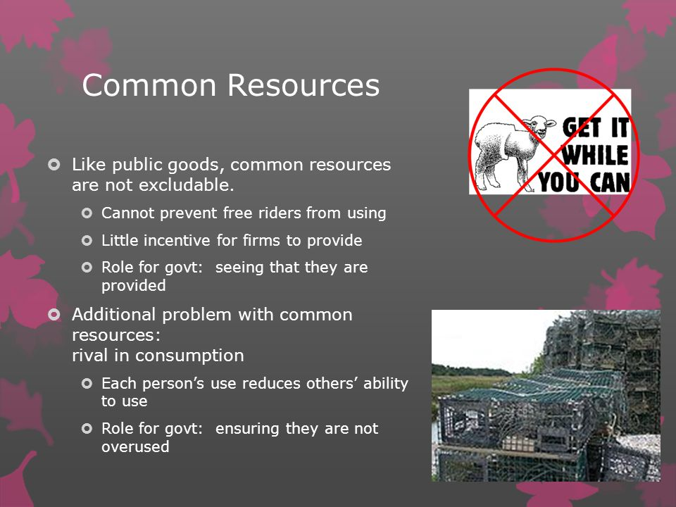 Common Resources Like public goods, common resources are not excludable.