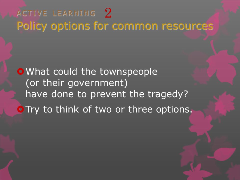 ACTIVE LEARNING Policy options for common resources ACTIVE LEARNING 2 Policy options for common resources What could the townspeople (or their government) have done to prevent the tragedy.