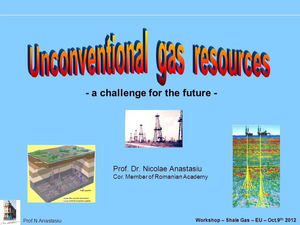 Prof.N.Anastasiu Workshop – Shale Gas – EU – Oct.9 th 2012 Prof. Dr. Nicolae Anastasiu Cor. Member of Romanian Academy - a challenge for the future -