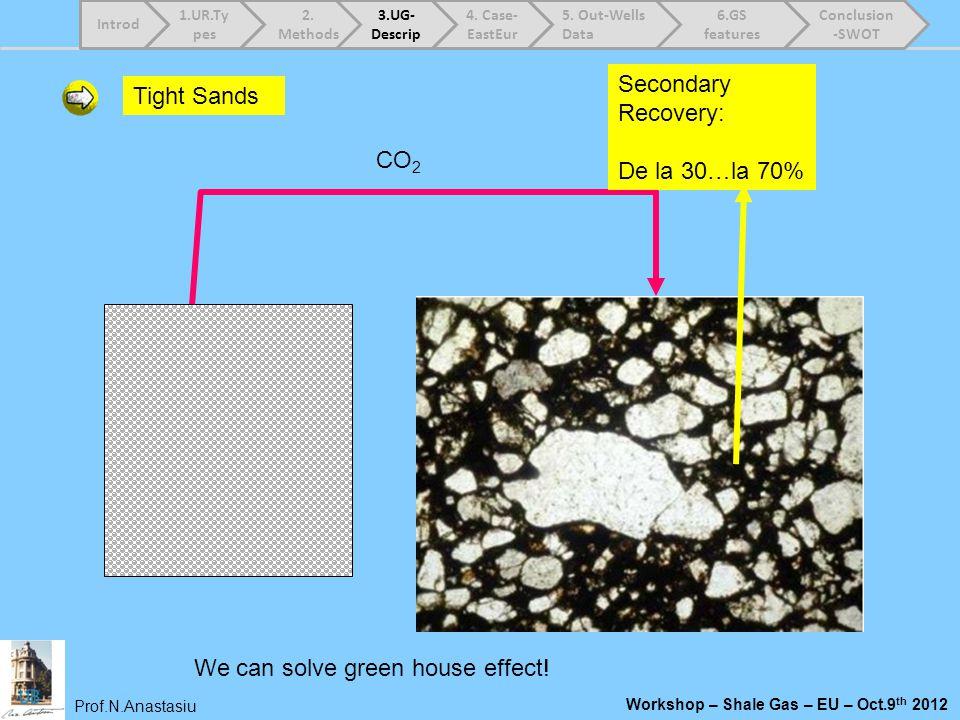 Prof.N.Anastasiu Workshop – Shale Gas – EU – Oct.9 th 2012 Tight Sands CO 2 Secondary Recovery: De la 30…la 70% We can solve green house effect! 1.UR.
