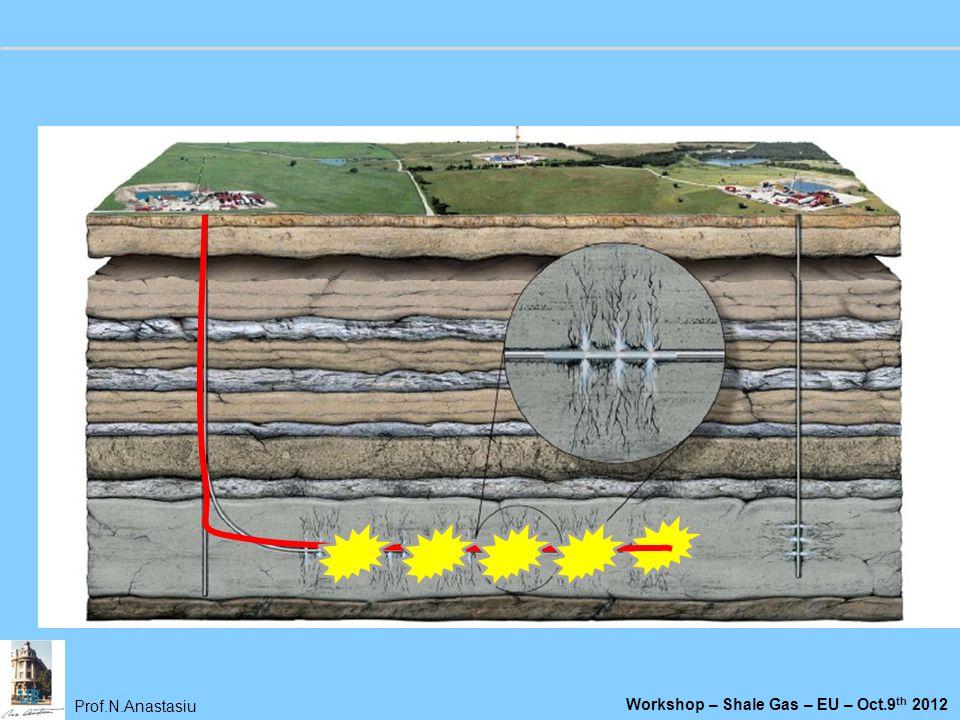 Prof.N.Anastasiu Workshop – Shale Gas – EU – Oct.9 th 2012