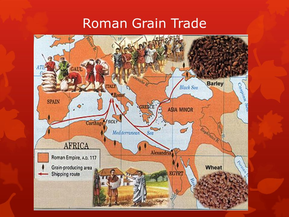Roman Grain Trade