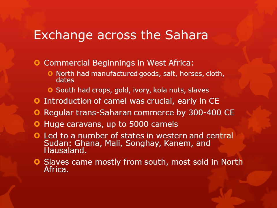 Exchange across the Sahara Commercial Beginnings in West Africa: North had manufactured goods, salt, horses, cloth, dates South had crops, gold, ivory, kola nuts, slaves Introduction of camel was crucial, early in CE Regular trans-Saharan commerce by 300-400 CE Huge caravans, up to 5000 camels Led to a number of states in western and central Sudan: Ghana, Mali, Songhay, Kanem, and Hausaland.