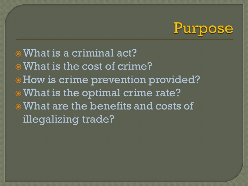 What is a criminal act? What is the cost of crime? How is crime prevention provided? What is the optimal crime rate? What are the benefits and costs o