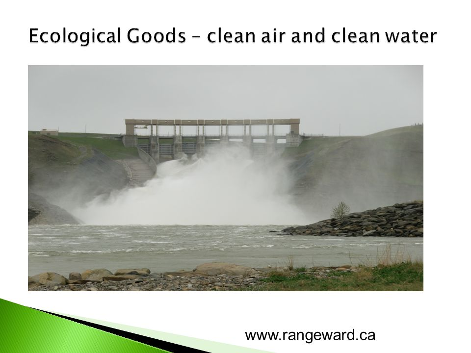 FEB is functional ecological beef - reflects the functional aspect of omega 3 beef as a food - reflects the functional aspect of the environment the animal was raised in FED is traditional grain finished beef www.rangeward.ca