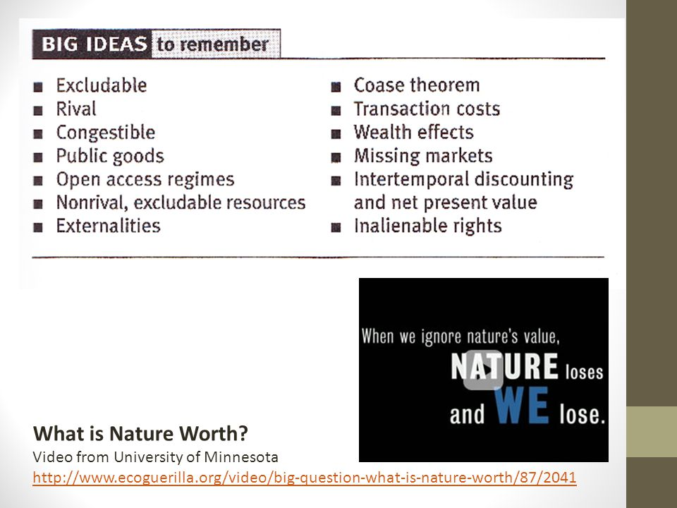 What is Nature Worth? Video from University of Minnesota http://www.ecoguerilla.org/video/big-question-what-is-nature-worth/87/2041