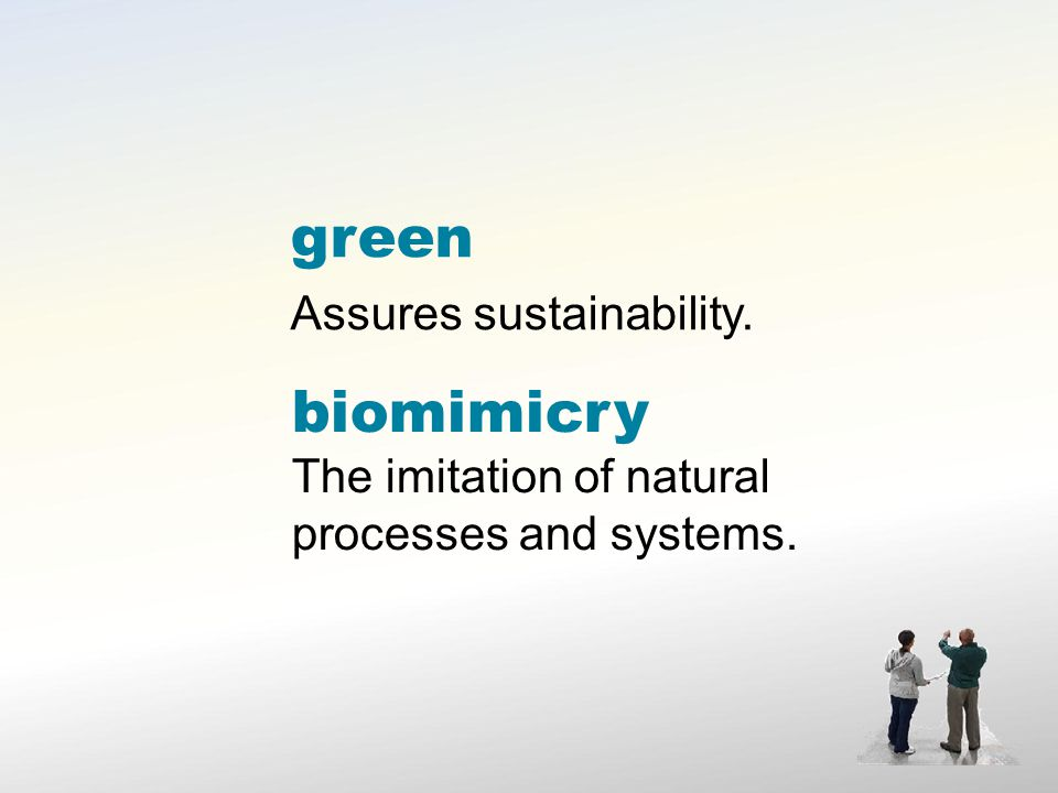 green Assures sustainability. biomimicry The imitation of natural processes and systems.