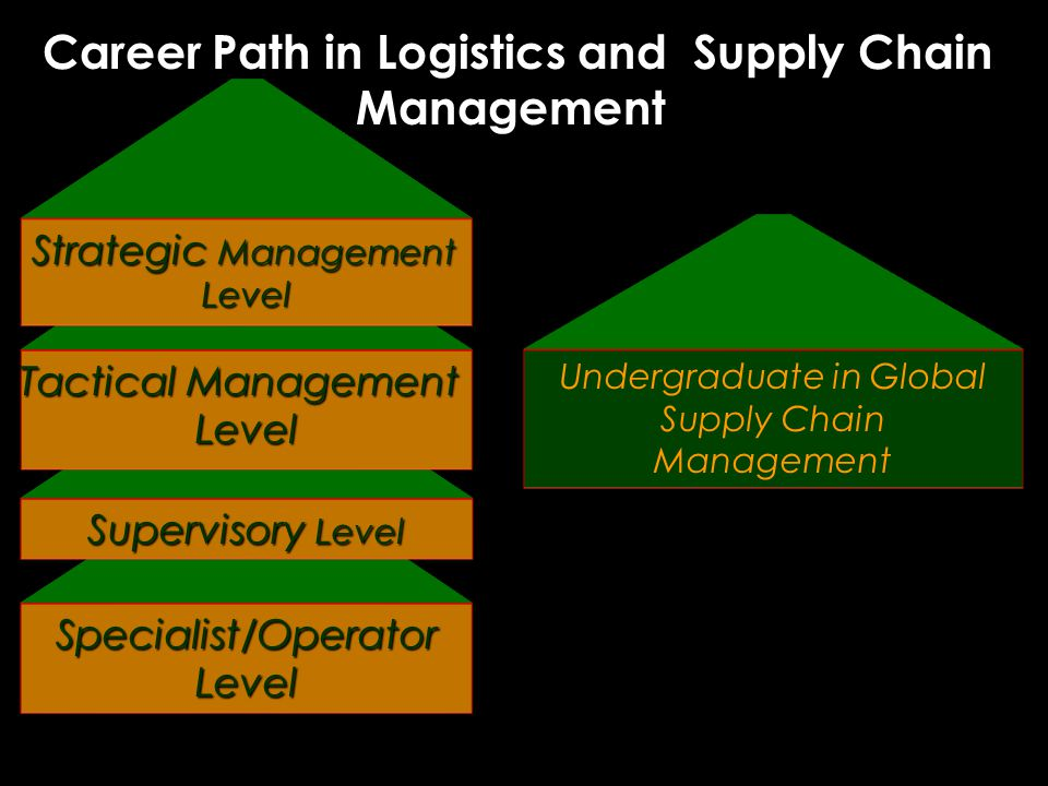 Undergraduate in Global Supply Chain Management Career Path in Logistics and Supply Chain Management Career Path in Logistics and Supply Chain Management Specialist/Operator Level Supervisory Level Tactical Management Level Strategic Management Level