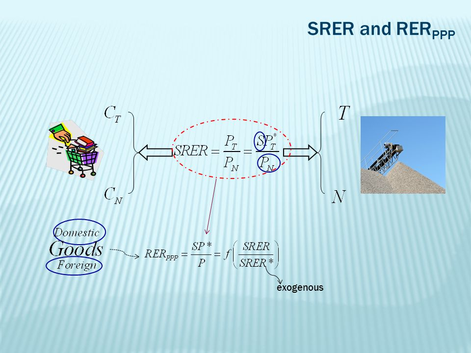 SRER and RER PPP exogenous