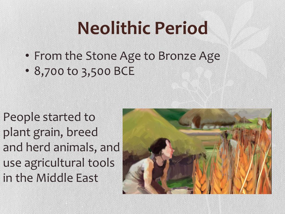 Neolithic Period From the Stone Age to Bronze Age 8,700 to 3,500 BCE People started to plant grain, breed and herd animals, and use agricultural tools in the Middle East