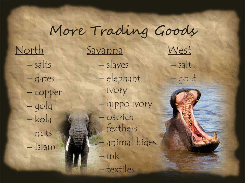 More Trading Goods North – salts – dates – copper – gold – kola nuts – Islam Savanna – slaves – elephant ivory – hippo ivory – ostrich feathers – anim
