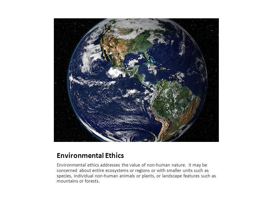 Principles of an Ethic of Sustainability It should be theoretically coherent.