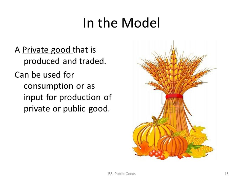 In the Model A Private good that is produced and traded. Can be used for consumption or as input for production of private or public good. JSS: Public