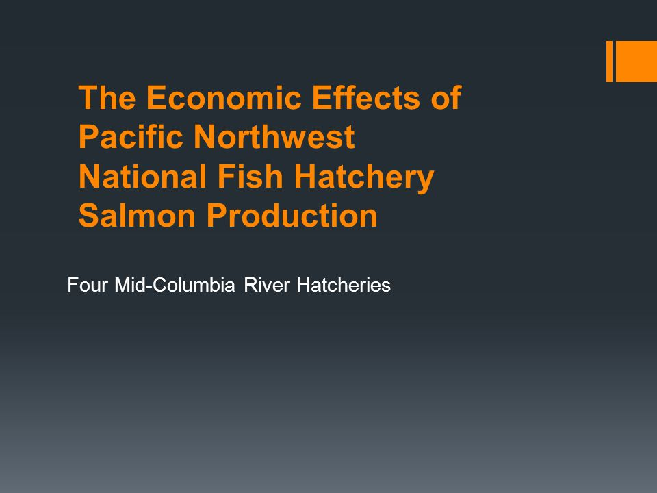 The Economic Effects of Pacific Northwest National Fish Hatchery Salmon Production Four Mid-Columbia River Hatcheries