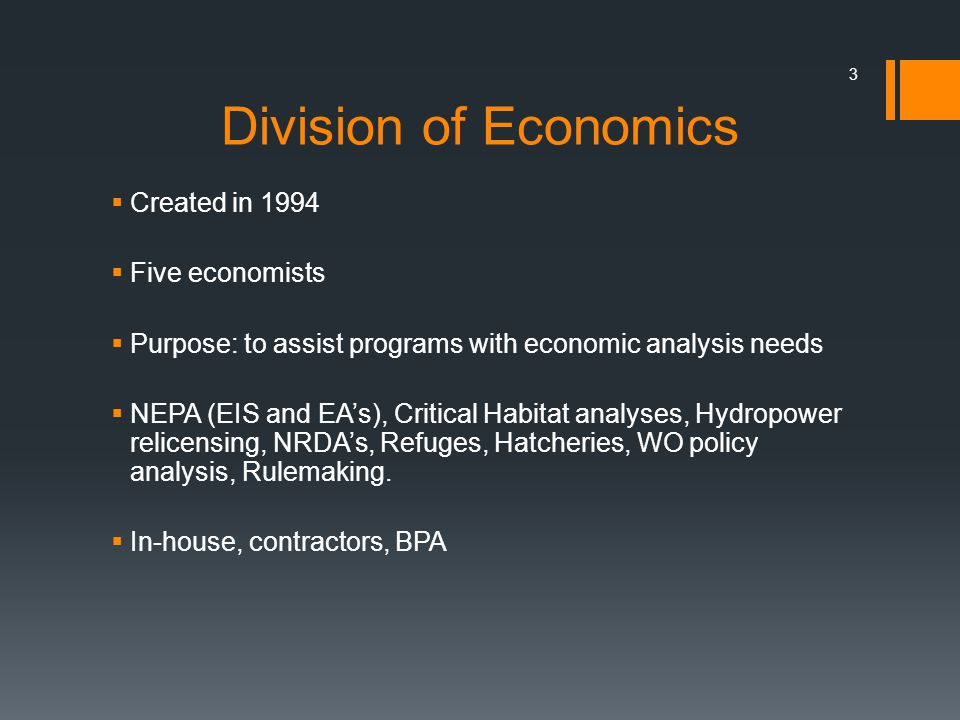 3 Division of Economics Created in 1994 Five economists Purpose: to assist programs with economic analysis needs NEPA (EIS and EAs), Critical Habitat analyses, Hydropower relicensing, NRDAs, Refuges, Hatcheries, WO policy analysis, Rulemaking.