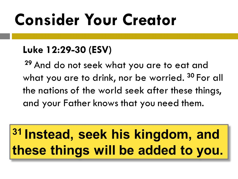 Consider Your Creator Luke 12:29-30 (ESV) 29 And do not seek what you are to eat and what you are to drink, nor be worried.