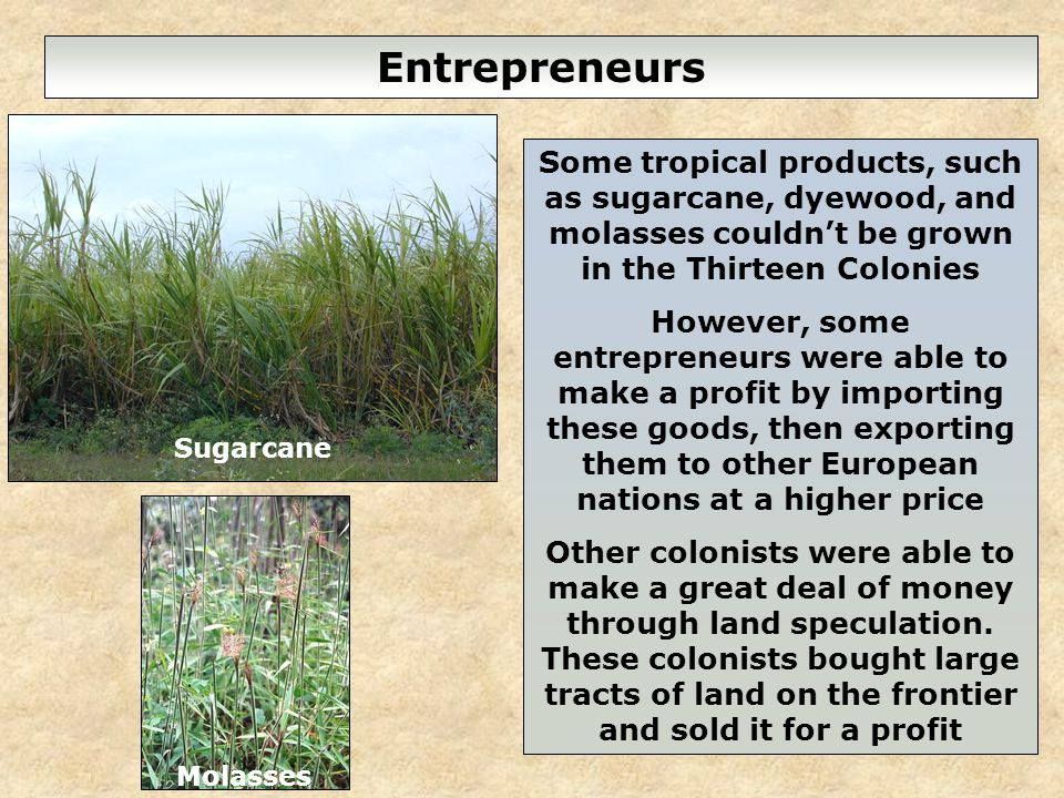 6 Entrepreneurs Some tropical products, such as sugarcane, dyewood, and molasses couldnt be grown in the Thirteen Colonies However, some entrepreneurs were able to make a profit by importing these goods, then exporting them to other European nations at a higher price Other colonists were able to make a great deal of money through land speculation.