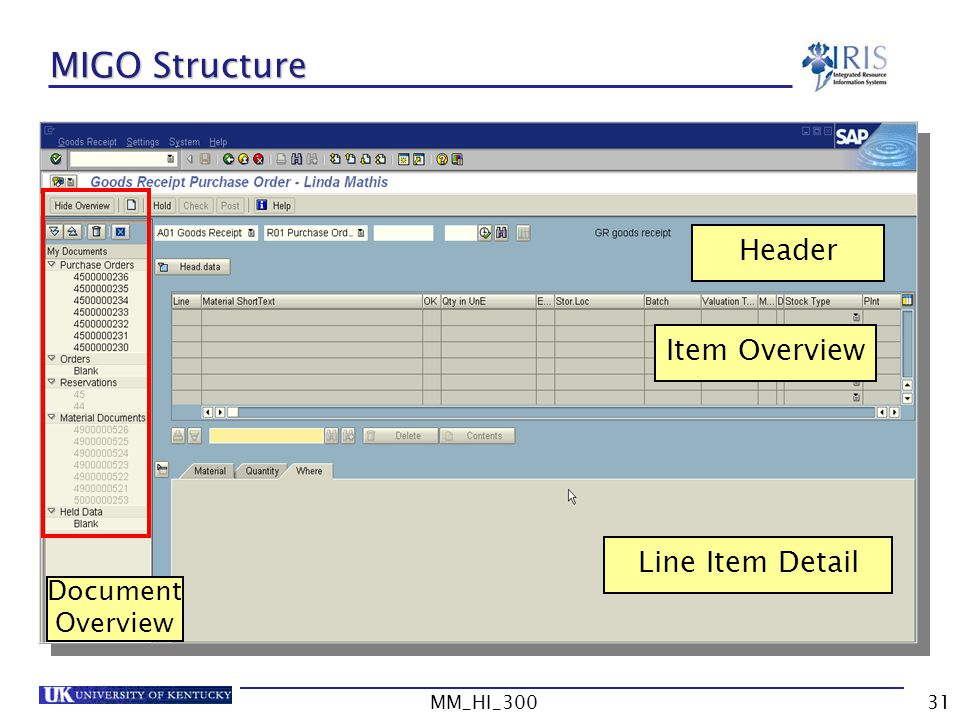 MM_HI_30031 MIGO Structure Header Item Overview Line Item Detail Document Overview